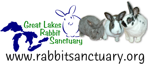 Great Lakes Sanctuary Logo