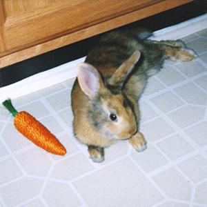 Baby Tigger Bunny Rabbit