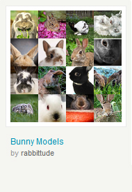 Bunny Models