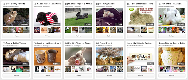 Rabbittude Pinterest Account