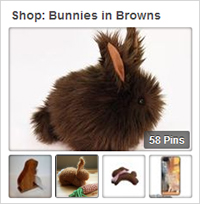 Shop Brown Bunnies