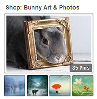 Shop Bunny Art & Photos
